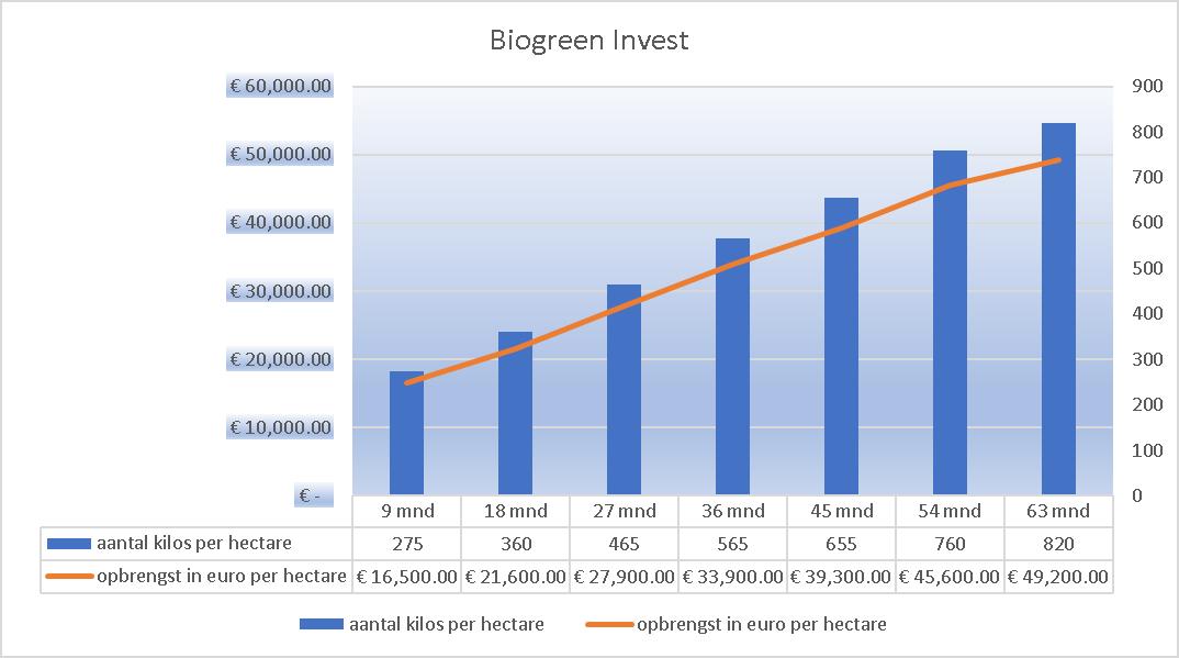 Biogreen Invest Grafiek