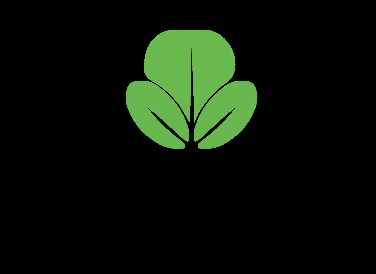 Biogreen Invest